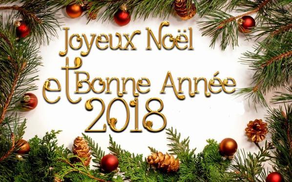 pour toutes mes amies et amis je vous souhaites une bonne année 2018  je reviendrez pas avant janvier bisous a tous et toutes