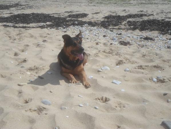 cool sur la plage