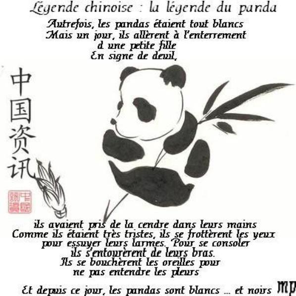 pandi panda petit ourson de chine