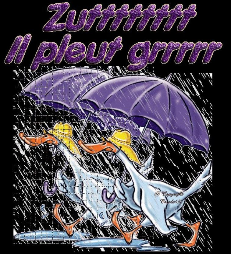 grrrr il pleut