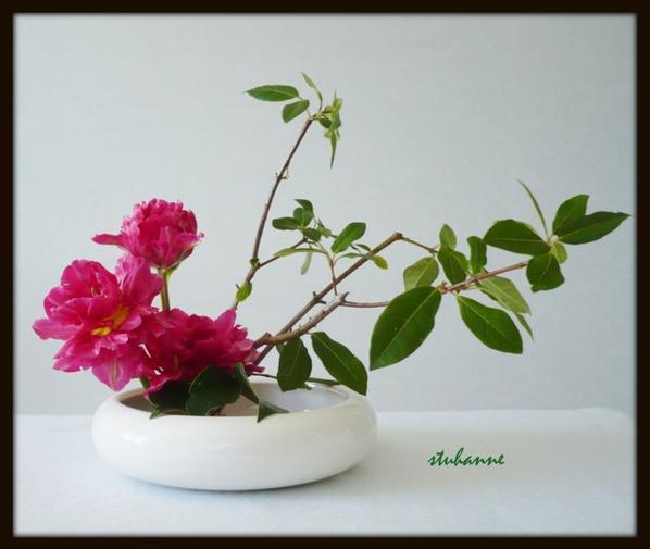 ikebana: moribana style incliné