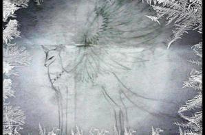 ♦ Angel or Devil by Okami-Ume ♦
