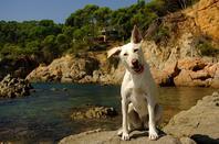 Vacances en Espagne!