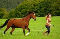 Séance photo Ln et ses chevaux!