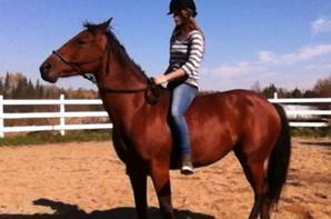 [Équitation éthologique]: La monte à cru !