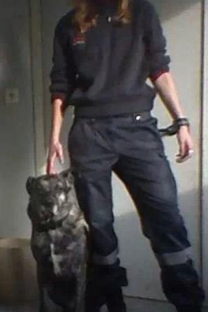 Docteur.Mort de mon chien le 31 juillet 2014