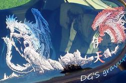 Les dragons (voir les 8 photos)