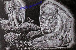Les animaux sauvages (voir les 7 photos)