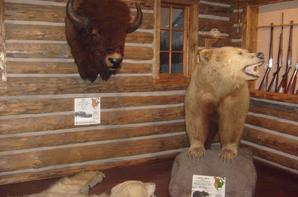Cette semaine, petit tour au BUFFALO BILL HISTORICAL CENTER !