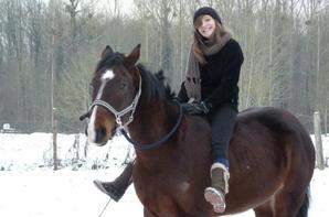 Mes amours de chevaux.