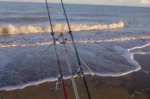 Pêche en Surf le dimanche 11 novembre