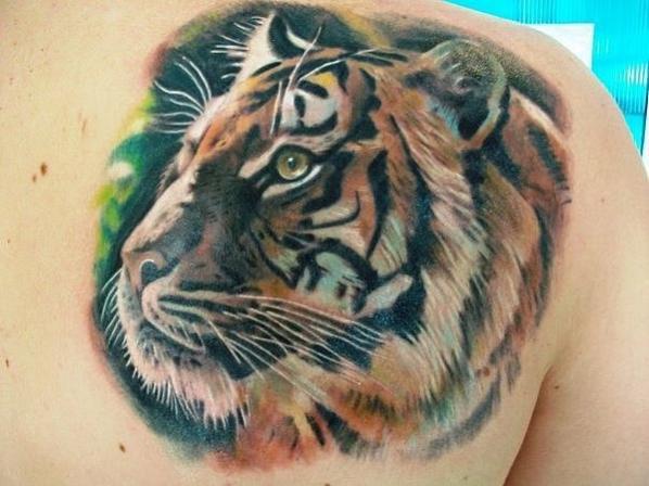 je voudrai me faire un des 3 tatoo mais le 2e avec le tigre et le lion jadort sa changerai mais faut que je voit ca avec se tatoueur lequel vous préféré vous dnnr votre avie