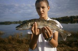 pêche sandre  pas du gros