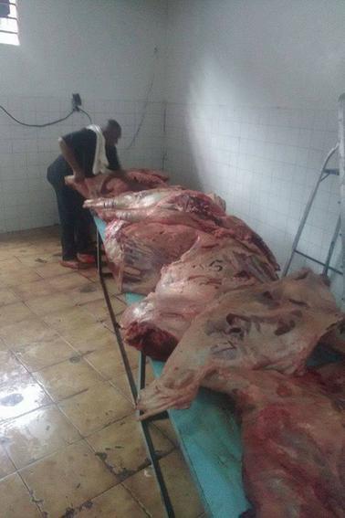 Lutte contre la vie chère à Ngazidja : Le gouvernorat importe de la viande de qualité et à bas prix