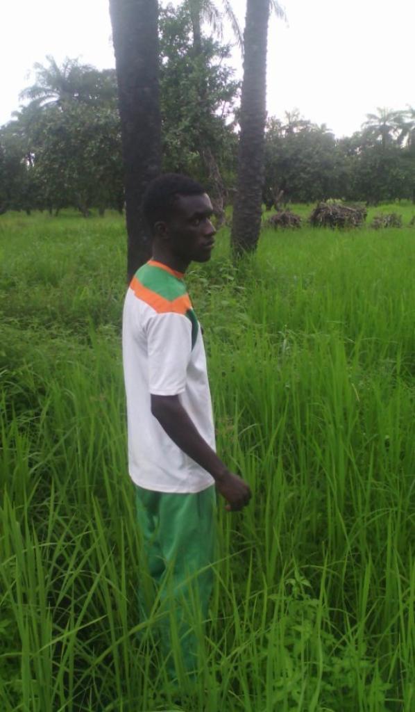 la Casamance au sud du Sénégal