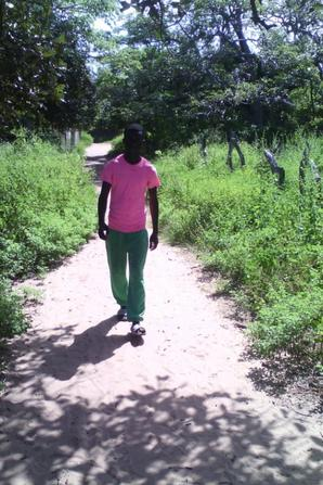 je suis parti en voyage au sud du sénégal Casamance