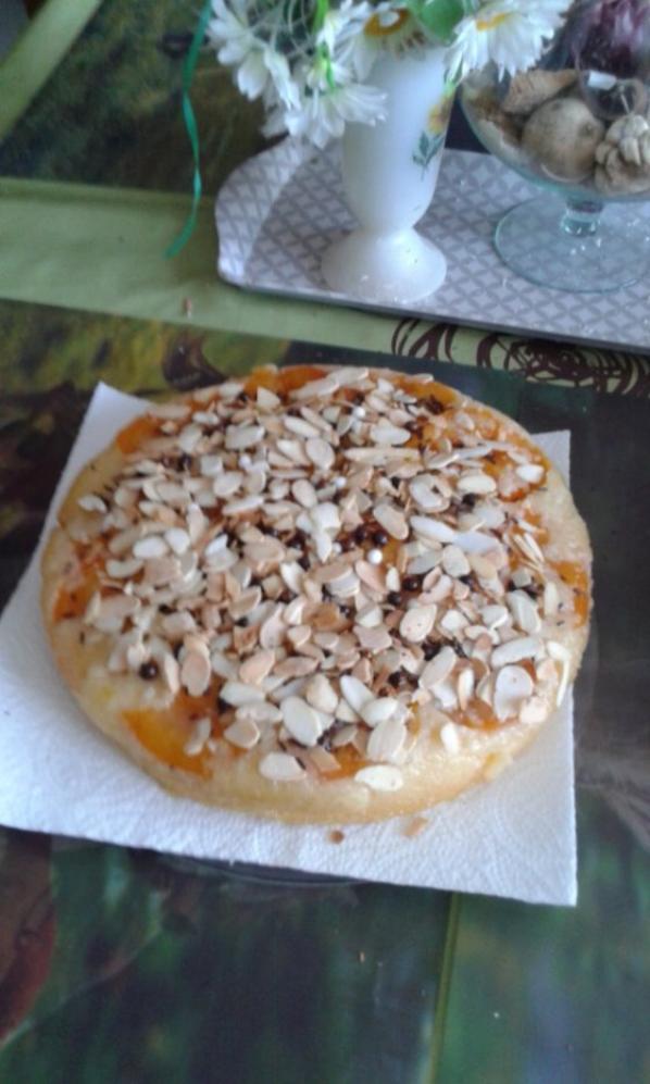 moelleux aux abricots et amandes grillees