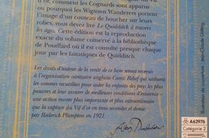 • Article Collection 2 [Le Quidditch à Travers les âges]
