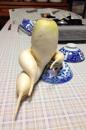 légumes qui rêvent faire autre chose de leur vie !