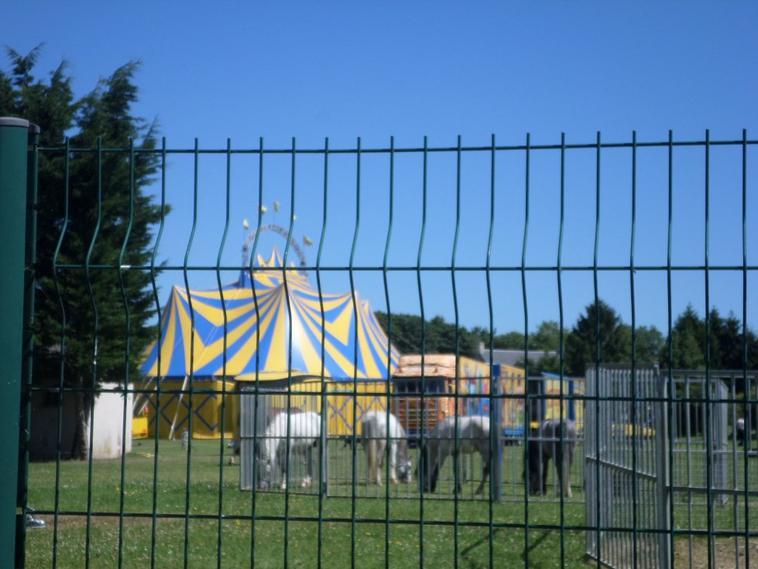 cirque Sabrina Fratellini , Bayeux 2016