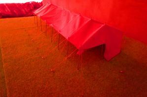 Préparation expo Gourdon 2017 , installation ménagerie !!!