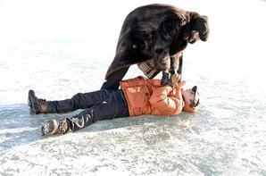 """FX lance Fargo : la """"série limitée"""" dotée d'excellentes critiques"""