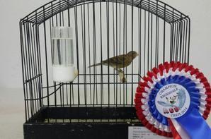 Concours Régional Picardie 2014