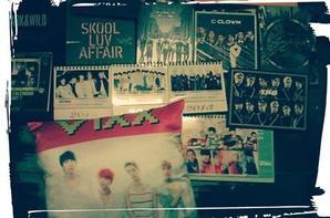 Mes albums kpop et un coussin Vixx