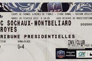 Maillot porté par Sloan PRIVAT contre Troyes en Coupe de France le 26/02/2013