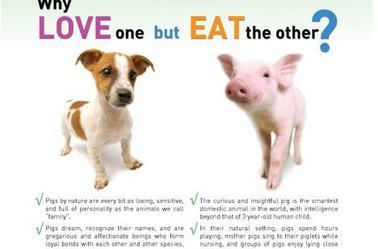 Végétarien...
