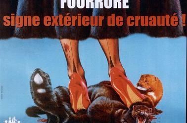 Fourrures