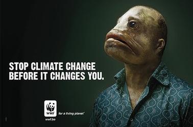 Rechauffement climatique