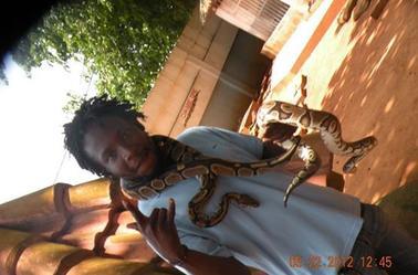 Temple de python...