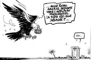 La problématique de l'alternance et du suivi des présidentielles africaines par les missions d'observations électorales de l'Occident