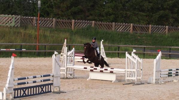 mon premier concours d'équitation