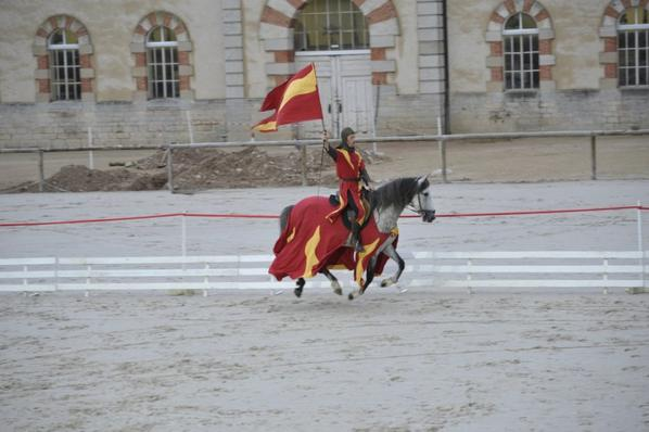 spectacle au Haras de Cluny (photos non libres de droits)