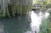 petite sortie a la riviere