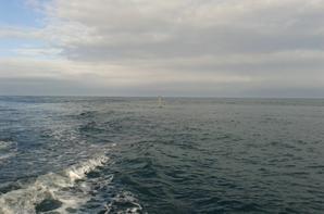 sortie en bateau ce matin