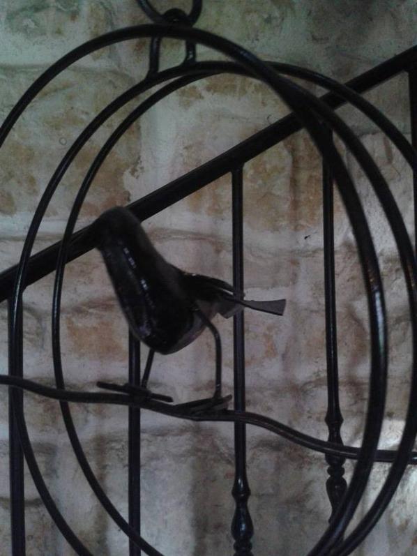mon oiseau en cage