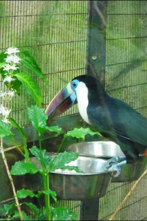 Journée au Zoo du Lunaret