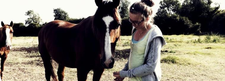 Un cheval peut changer votre vie il faut juste savoir trouver le quel... ♥