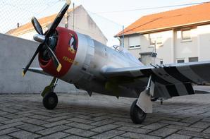 P-47 (fin)