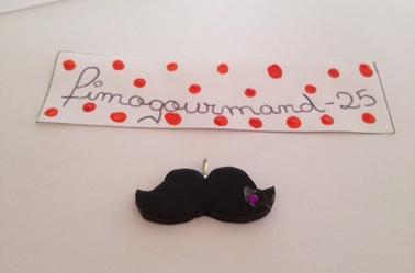 moustaches ( un avec stras ) ( pendentifs je pense )