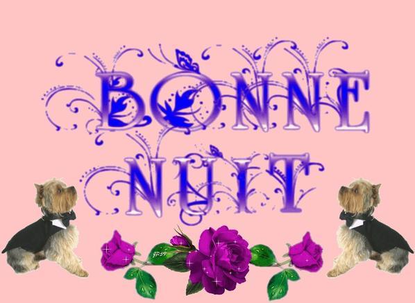 bonne nuit a vous mes amis bisous bisous