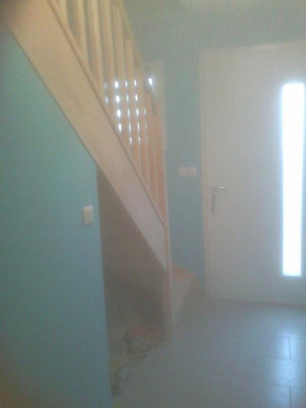 couloir d'entrée + montée d'escalier + palier étage