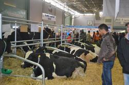 Salon de l'Agriculture - Tunisie 2014