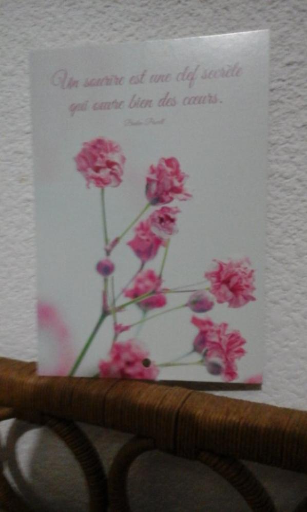 Mille mercis à Peggy pour sa carte et à Doudourose pour ces tres jolis cadeaux , gros bisous , j'ai été tres touchée