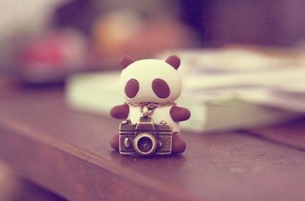 Kawaii Photography #1