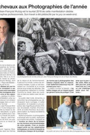 « Des éléphants et des hommes » : un livre d'art .....
