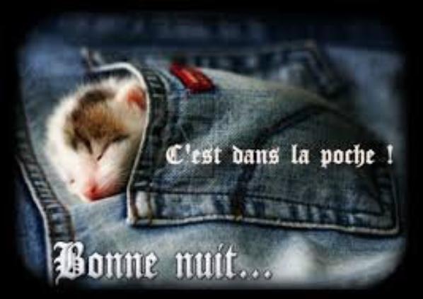 BONNE NUIT !!!!!!! ..........